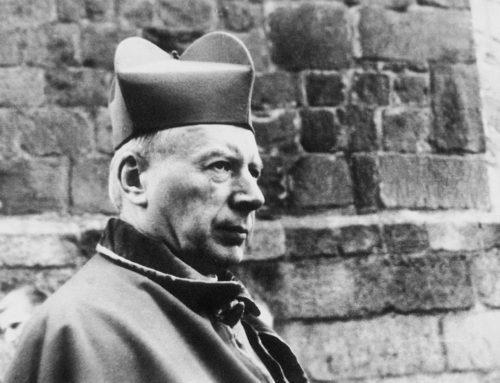 Przygotowanie do beatyfikacji Prymasa Tysiąclecia