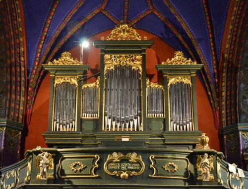 Letnie prezentacje organowe w katedrze – TRANSMISJA